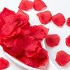 Уникальные свойства лепестков роз