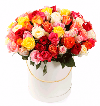 Букет из фламандской розы (101) в коробке