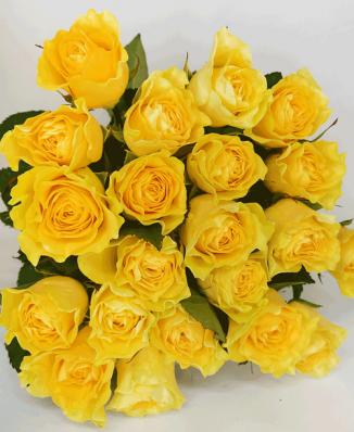 Букет из 21 жёлтой розы