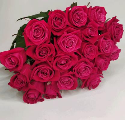 Букет 21 карминная роза