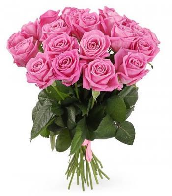 21 нежно-розовая роза