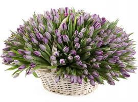 Цветы на свадьбу «Море тюльпанов»