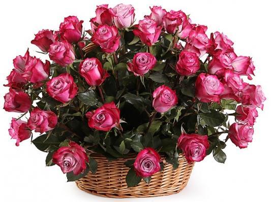 Букет из эквадорской розы в корзине