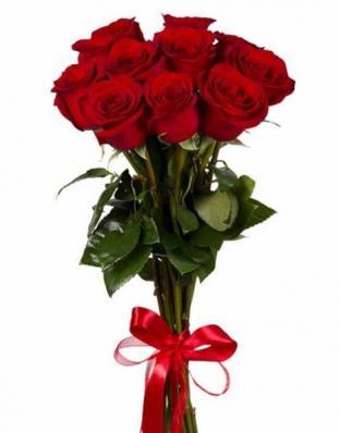 9 красных премиальных роз