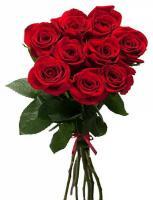 9 бордовых роз