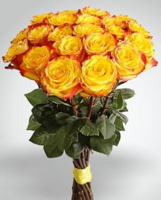 21 красно-оранжевая роза