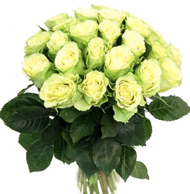 21 зелёная роза