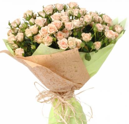 21 кремовая кустовая роза