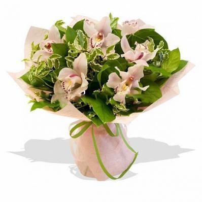 Букет из орхидей на 1 сентября