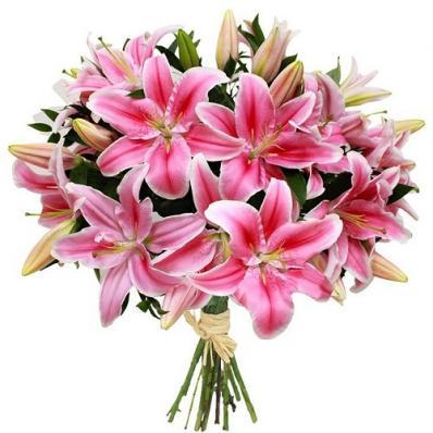 Розовые лилии на 1 сентября