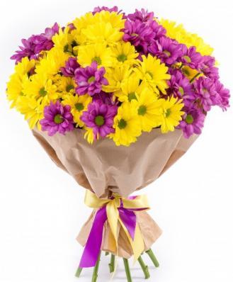 Фиолетовые и жёлтые хризантемы на 1 сентября