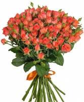 25 кустовых роз Алегрия