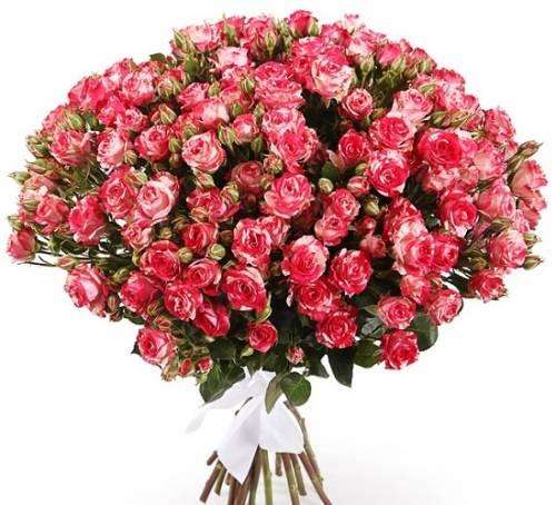 15 кустовых роз «Фаер воркс»