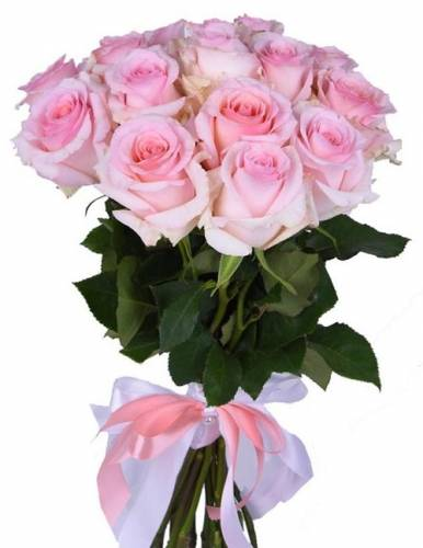 15 нежно-розовых роз Нена