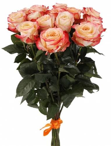 """Красивый букет из 15 роз """"Cabaret"""""""