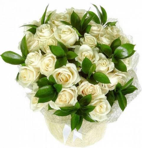 25 белых роз в кальке