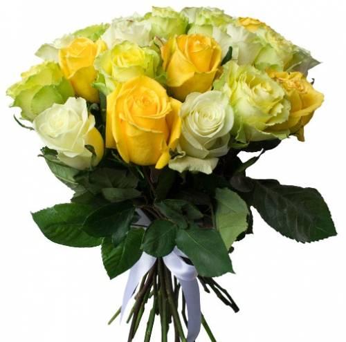 25 жёлтых, белых и зелёных роз