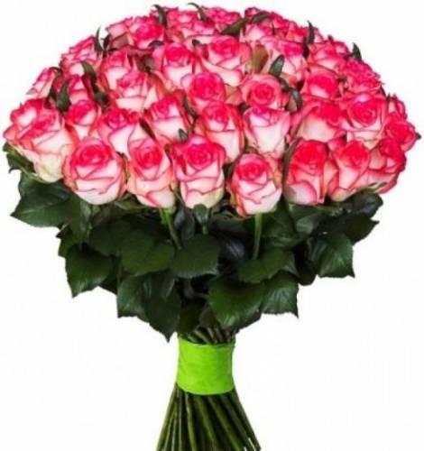 101 роза Джамилия с лентой