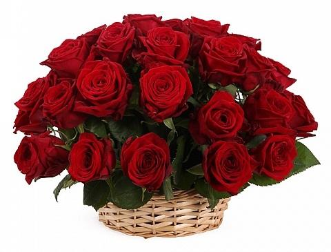 31 красная роза в корзине