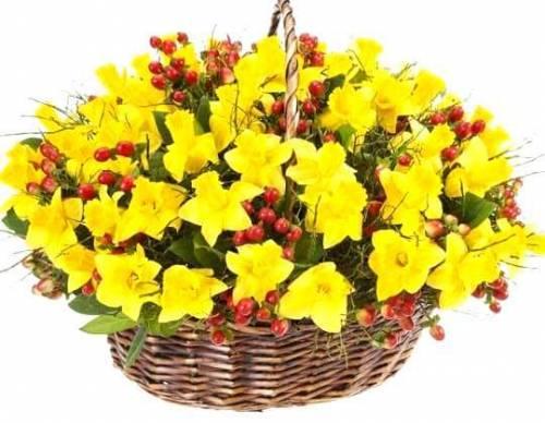 Корзина цветов с нарциссами