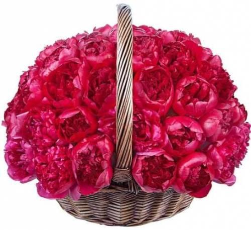 Корзина цветов с пионами
