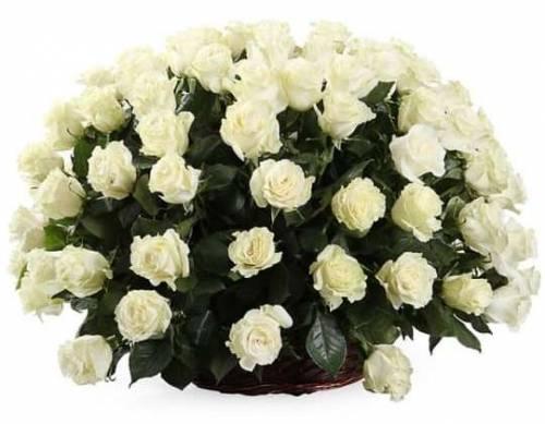 101 белая роза в цветочной корзине