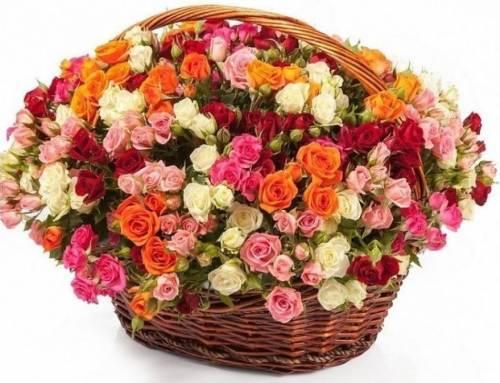 51 кустовая разноцветная роза в корзине