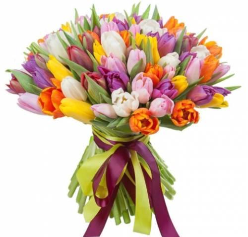 61 тюльпан на 8 марта