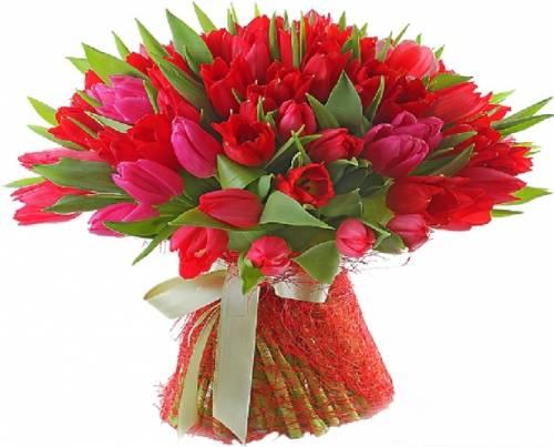 79 тюльпанов на восьмое марта