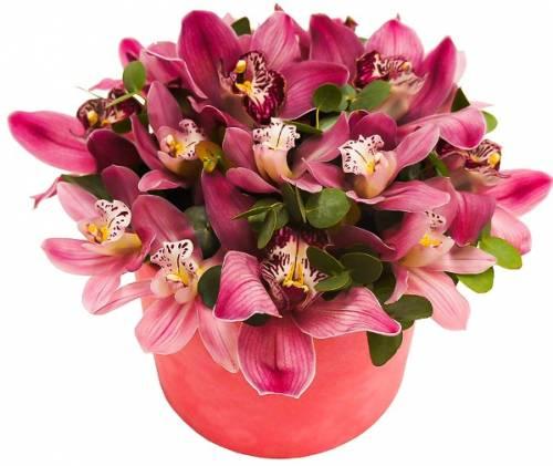 Букет из 17 орхидей на День рождения