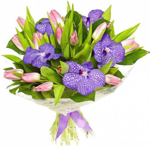 Букет из розовых тюльпанов и орхидей на 8 марта