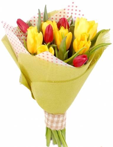 11 красивых тюльпанов на День учителя