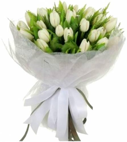 Белые тюльпаны на женский день