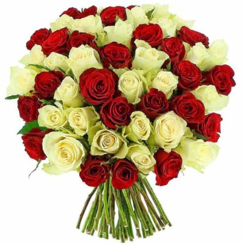 75 роз на День рождения любимой