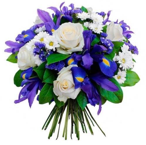Розы, ирисы и хризантемы на День рождения девушки