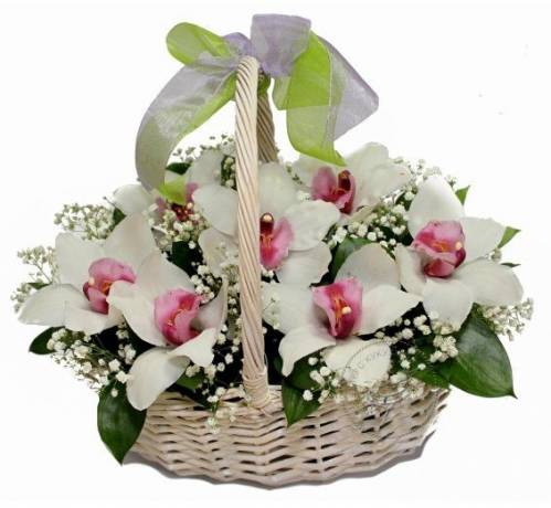 Корзина с орхидеями на День рождения