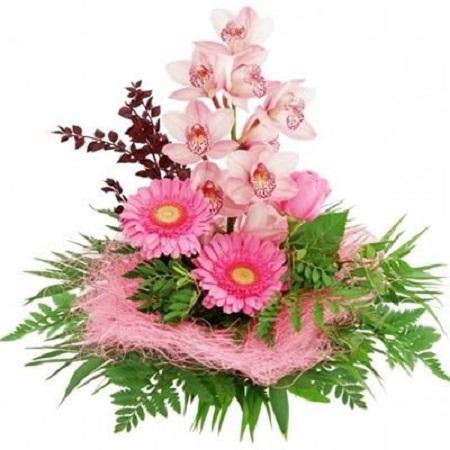 Букет на День рождения из орхидей и гербер
