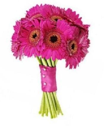 Розовые герберы для невесты