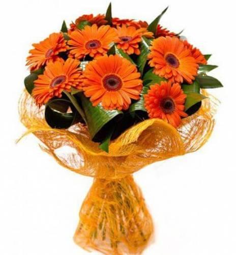 Оранжевые герберы на День рождения