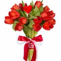 21 красный тюльпан на 8 марта